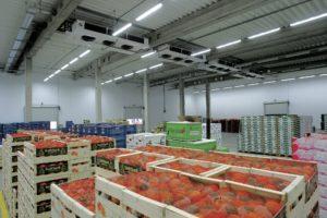 Промышленные холодильники для фруктов в Херсоне